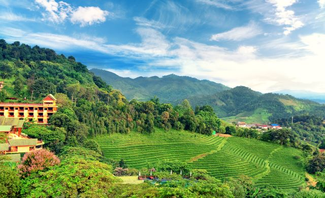 Doi Mae Salong mountain in Chiang Rai Thailand