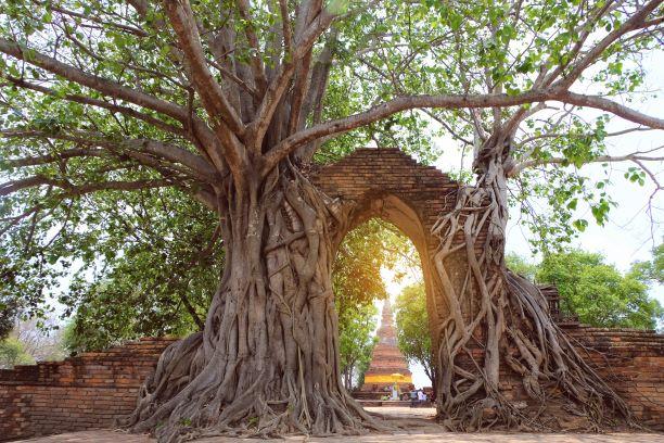 Gate of time at Wat Phra Ngam in Ayutthaya