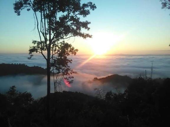 Sea of Fog at Kew Ta-Khian Ngam Viewpoint