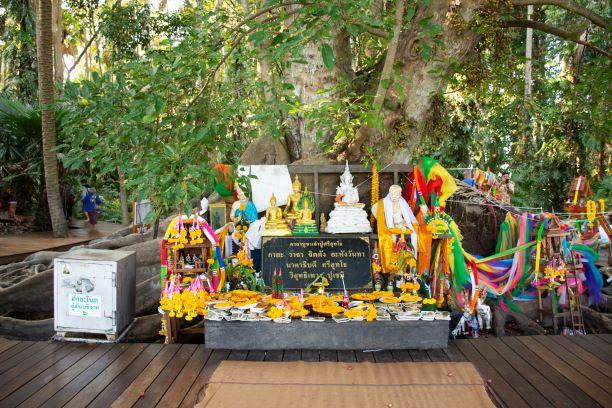 Sri Sut Tho Naga-Kham Chanot Udon Thai