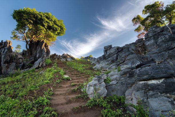 steps trekking to Doi Pha Tang viewpoint in Chiang Rai, Thailand