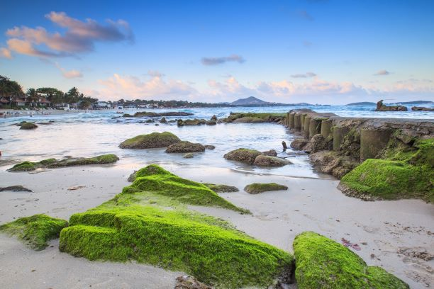 Mossy rock on the beach evening time at chaweng beach, Koh Samui, Thailand