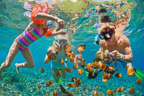 Things to Do in Phuket - explore the sea world