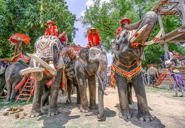 Ban Ta Klang Elephant Village