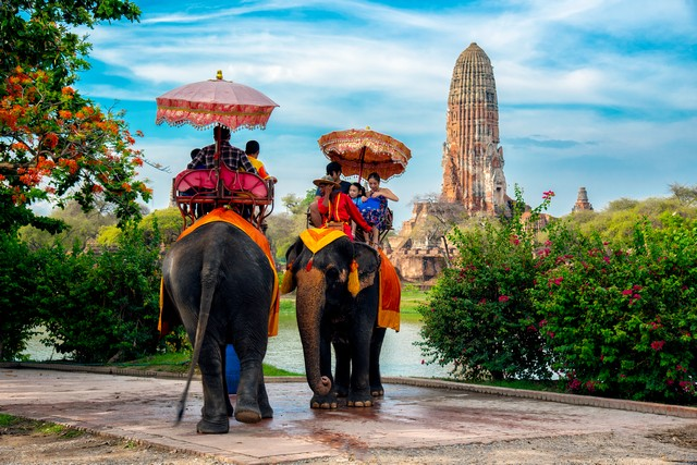 Family ride elephant to look at view Wat phra ram