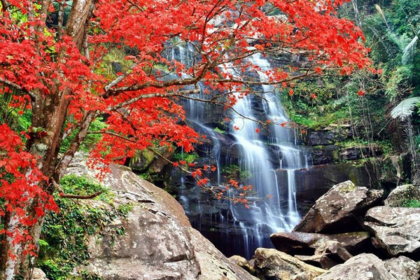Khun Pong Waterfall-Loei
