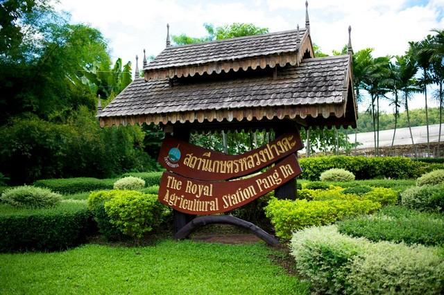 The Royal Project Pangda Station