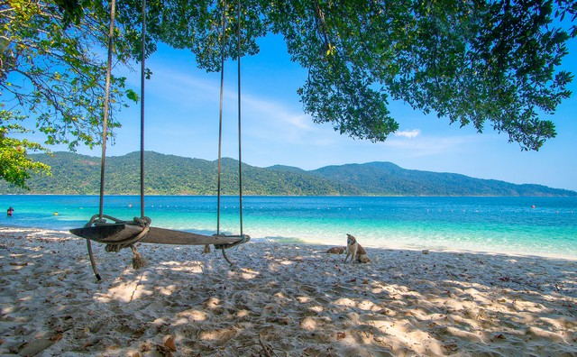 Wood swings at the beach at Tarutao, Tropical Beach, National Marine Park