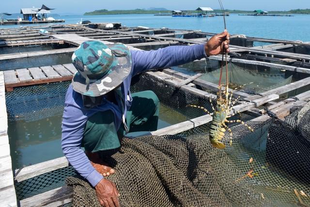 Ban Laem Sai Bay