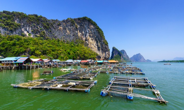 Fisherman village, Phang Nga, Ao Phang Nga National Park, Thailand