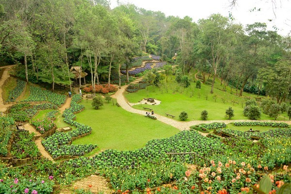 Doi Chang Moob Arboretum