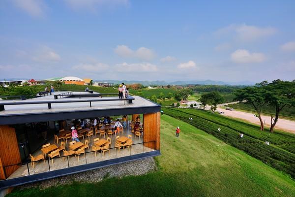 Extend your wonderful trip with the Choui Fong Tea Café 2