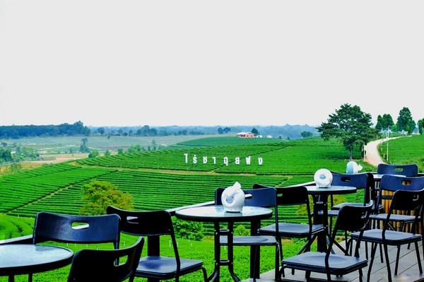 Choui Fong Tea Café