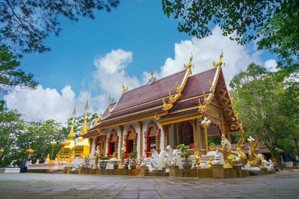 Phra that doi tung temple