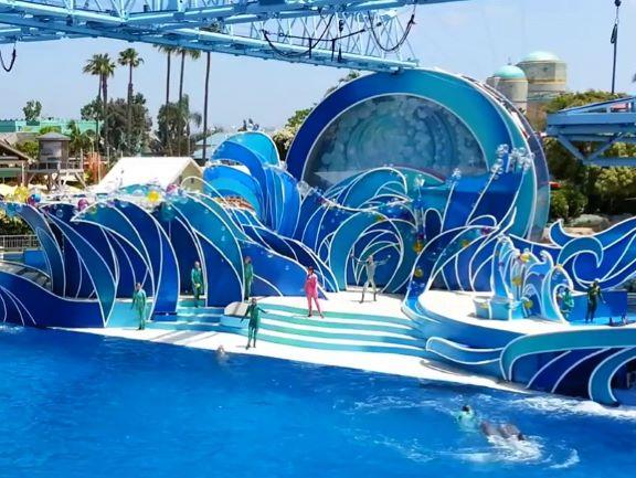 Pattaya Dolphin World at a Glance